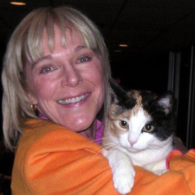 Kiddy cats: The sheer joy of pets