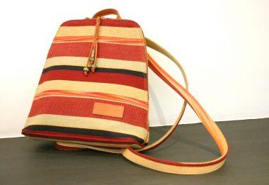 What are you carrying? Beware handbag bacteria